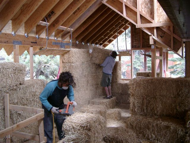 students building house